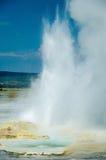 Erupting geyser Stock Images