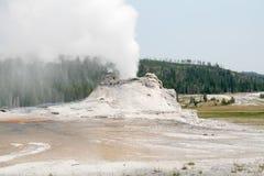 Erupting Geyser Stock Photo