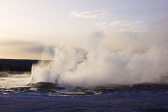 Erupting geyser in yellowstone Stock Photography