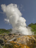 Erupting geysers Royalty Free Stock Photography
