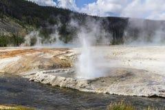 Erupting Geysir in Yellowstone Royalty Free Stock Photos