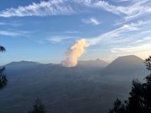 Eruption durch die Bäume Stockfotografie