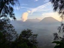 Eruption durch die Bäume Lizenzfreies Stockbild