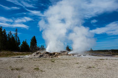 Eruption of geothermal in yellowstone park. Eruption of geothermal under blue sky and white cloud in Yellowstone Park royalty free stock photos