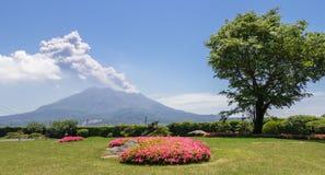 Eruption mit der Asche von Vulcan Sakurajima abgedeckt durch grüne Landschaft Genommen vom wunderbaren Garten Sengan-en Gefunden  lizenzfreies stockbild