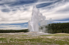 Eruption of Old Faithful geyser at Yellowstone National Park Royalty Free Stock Images