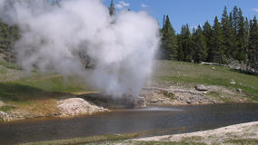 Eruption of Riverside Geyser Stock Images