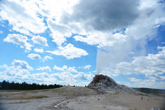 Eruption of White Dome Geyser at Yellowstone Royalty Free Stock Photos
