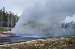 Eruzione del geyser della riva del fiume nel parco nazionale di Yellowstone, U.S.A. Immagine Stock