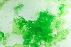 Erva daninha do mar verde Imagem de Stock Royalty Free
