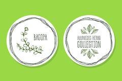 Erva de Ayurvedic - etiqueta do produto com Bacopa Fotos de Stock Royalty Free