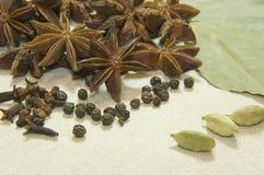 Erva e especiarias aromáticas Imagem de Stock