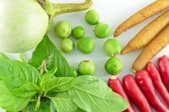 Erva e ingredientes picantes para fazer o alimento tailandês Imagem de Stock