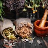 Erva medicinal da colheita Foto de Stock Royalty Free