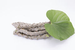 Erva moonseed folha do coração para saudável Fotografia de Stock