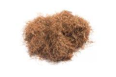 Erva seca da seda do milho Estigmas Maydis Close-up Imagens de Stock Royalty Free