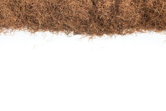Erva seca da seda do milho Quadro de Maydis dos estigmas Imagens de Stock Royalty Free