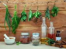 A erva sortido empacota a salsa de suspensão, sábio, alecrim, aneto, sprin imagem de stock royalty free