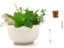 Erval fresco dos cuidados médicos alternativos e garrafa da aromaterapia Foto de Stock
