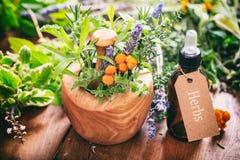 Ervas, óleo essencial e almofariz no fundo de madeira Imagens de Stock