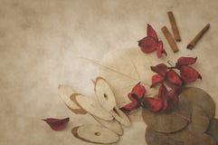 Ervas aromáticas secadas Fotos de Stock