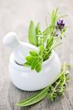 Ervas da cura no almofariz e no pilão Foto de Stock Royalty Free