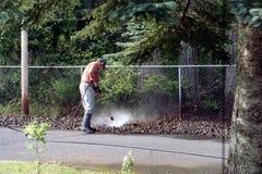 Ervas daninhas de pulverização Fotografia de Stock