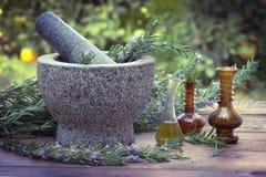 Ervas dos alecrins e garrafa do óleo de alecrins Fotos de Stock Royalty Free