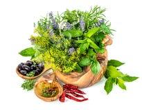 Ervas e aneto frescos das especiarias, manjericão, sábio, alfazema, louro, oliv Imagens de Stock