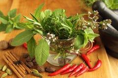 Ervas e especiarias Foto de Stock
