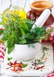 Ervas e especiarias. Fotos de Stock