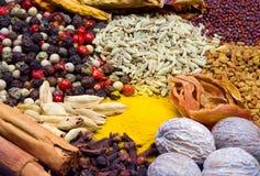 Ervas e especiarias Fotografia de Stock