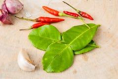 Ervas e especiarias ajustadas para fazer a Tom Yum a sopa picante fotografia de stock royalty free