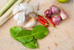 Ervas e especiarias ajustadas para fazer a Tom Yum a sopa picante fotos de stock royalty free