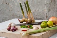 Ervas e especiarias ajustadas para fazer a Tom Yum a sopa picante fotografia de stock
