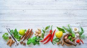 Ervas e especiarias aromáticas frescas para cozinhar fotos de stock