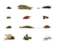 Ervas e especiarias - carta Fotos de Stock