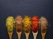 Ervas e especiarias coloridas em colheres de madeira Fotos de Stock