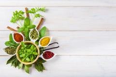 Ervas e especiarias frescas em um fundo de madeira branco Imagem de Stock Royalty Free