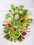 Ervas e especiarias frescas em um fundo de madeira branco Fotografia de Stock Royalty Free