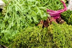 Ervas e especiarias orgânicas frescas no mercado Fotografia de Stock Royalty Free