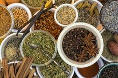 Ervas e especiarias secadas Fotografia de Stock