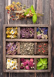 Ervas e flores secadas fotografia de stock royalty free