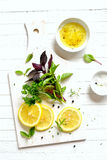 Ervas e limão frescos do jardim em uma superfície branca imagens de stock