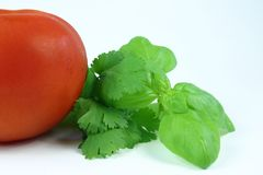 Ervas e tomate fotografia de stock royalty free