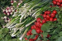 Ervas e vegetais Fotografia de Stock