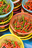 Ervas e vegetais asiáticos imagens de stock royalty free