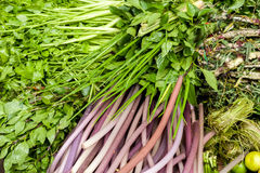 Ervas, especiarias e hastes liliy no mercado asiático Foto de Stock Royalty Free