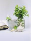 Ervas frescas! foto de stock