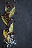 Ervas frescas Fotografia de Stock